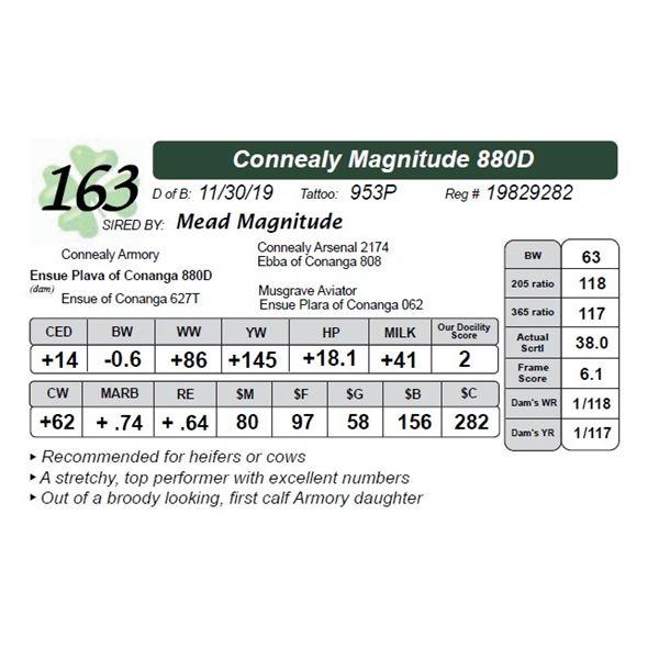 Connealy Magnitude 880D