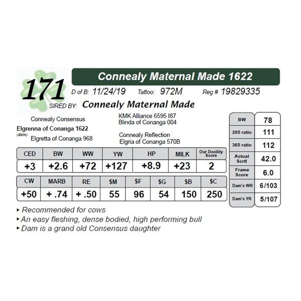 Connealy Maternal Made 1622