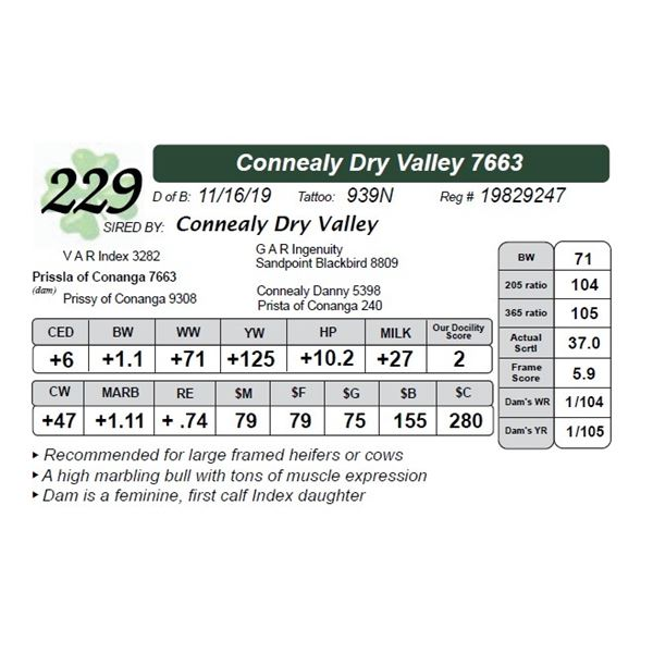 Connealy Dry Valley 7663