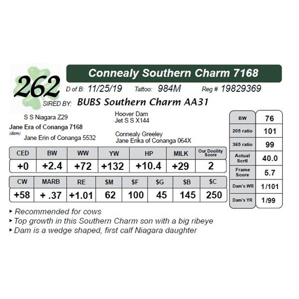 Connealy Southern Charm 7168