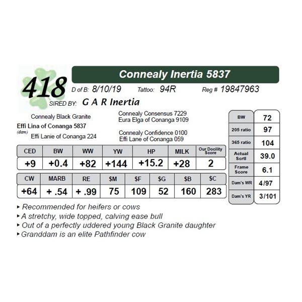 Connealy Inertia 5837