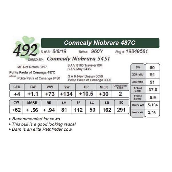 Connealy Niobrara 487C