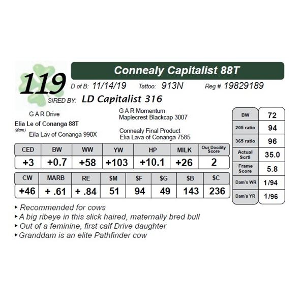 Connealy Capitalist 88T