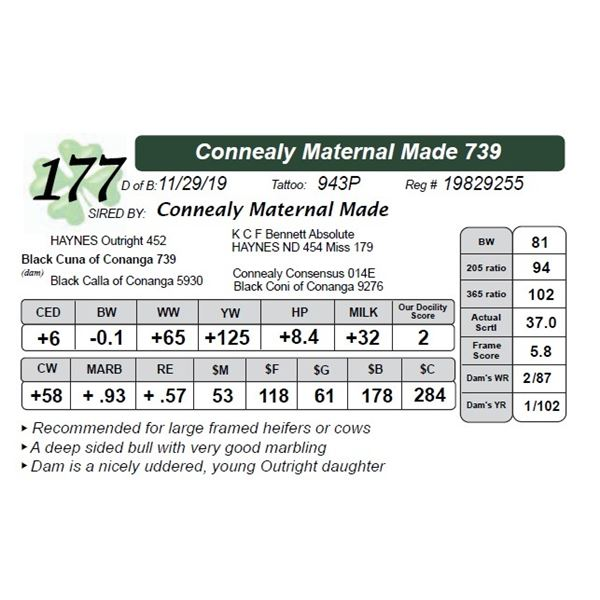 Connealy Maternal Made 739