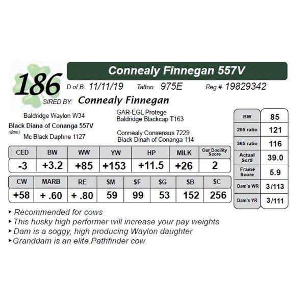 Connealy Finnegan 557V