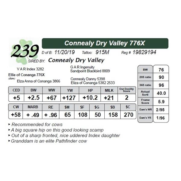 Connealy Dry Valley 776X