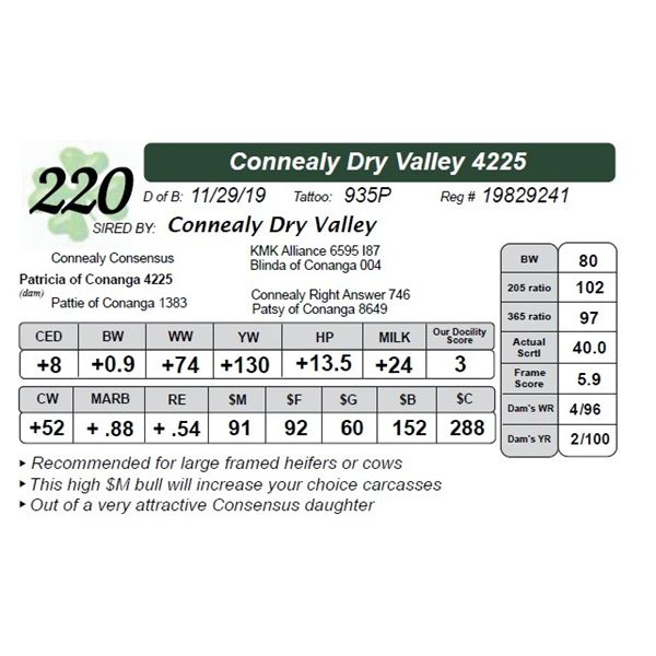 Connealy Dry Valley 4225