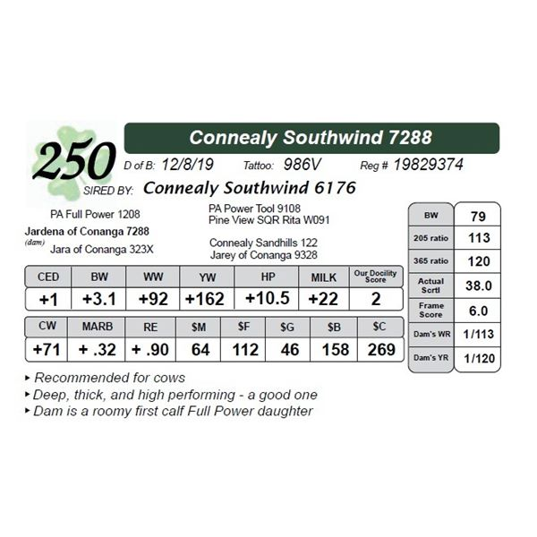 Connealy Southwind 7288