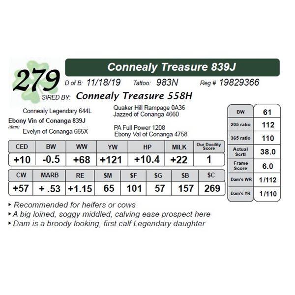 Connealy Treasure 839J