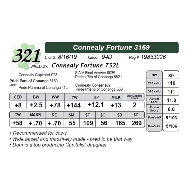 Connealy Fortune 3169