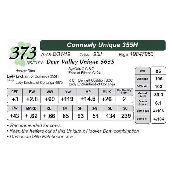 Connealy Unique 355H