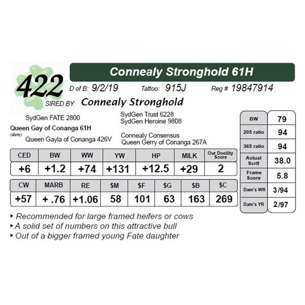Connealy Stronghold 61H