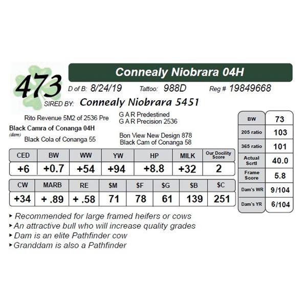 Connealy Niobrara 04H