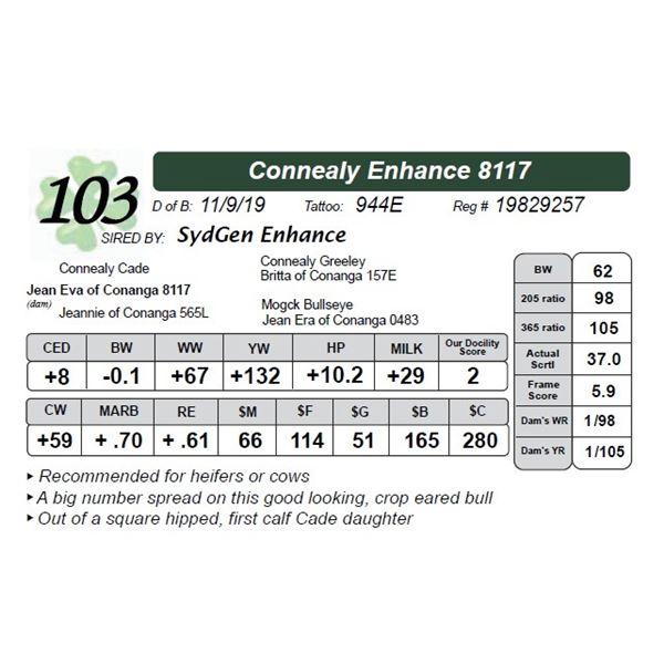 Connealy Enhance 8117