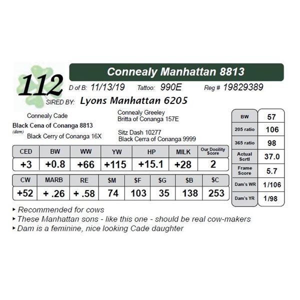 Connealy Manhattan 8813