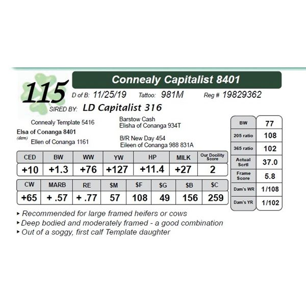 Connealy Capitalist 8401