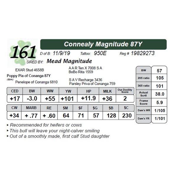 Connealy Magnitude 87Y