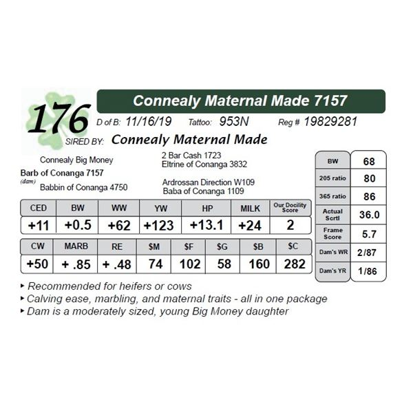Connealy Maternal Made 7157