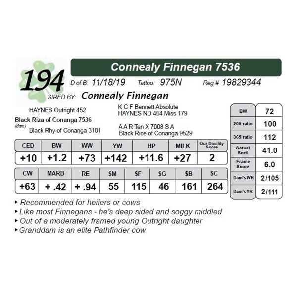 Connealy Finnegan 7536