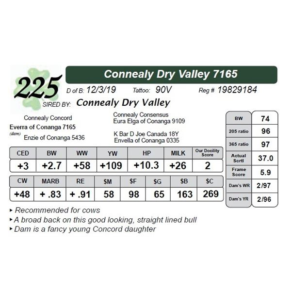 Connealy Dry Valley 7165