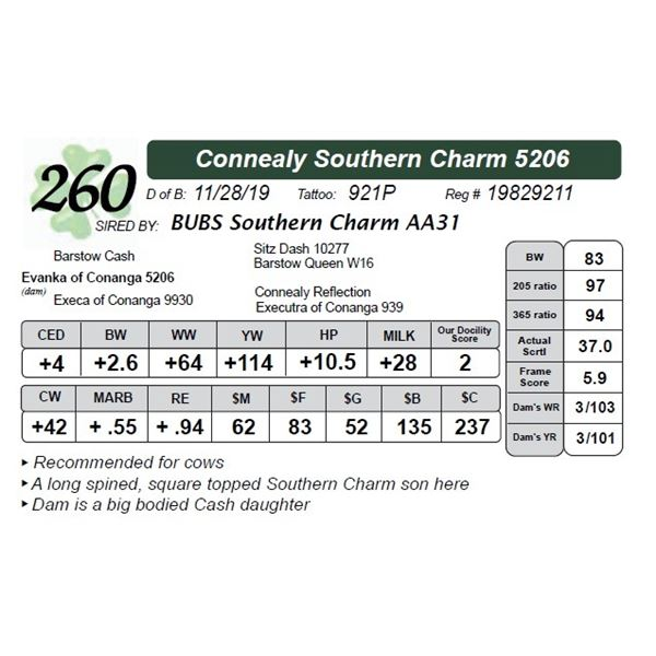 Connealy Southern Charm 5206