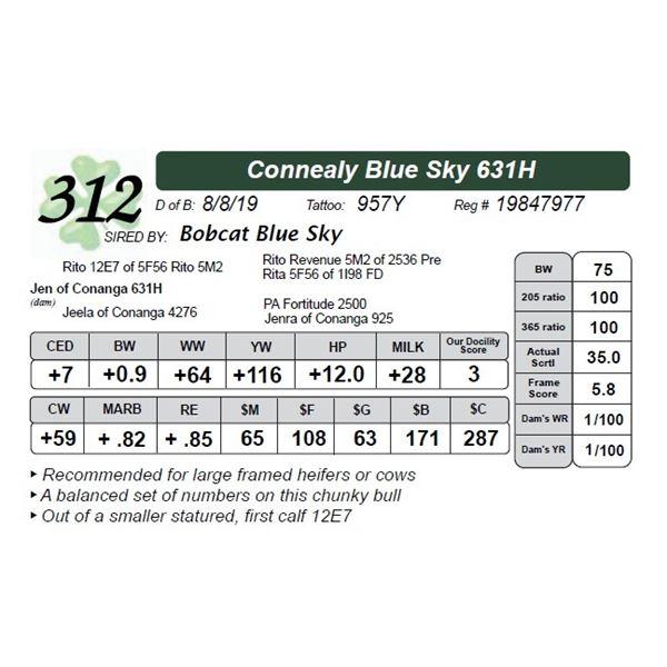 Connealy Blue Sky 631H