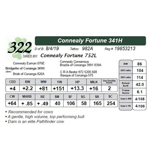 Connealy Fortune 341H