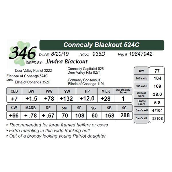 Connealy Blackout 524C
