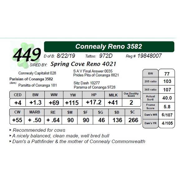 Connealy Reno 3582