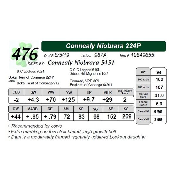 Connealy Niobrara 224P