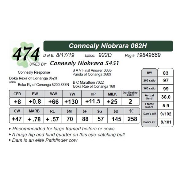 Connealy Niobrara 062H