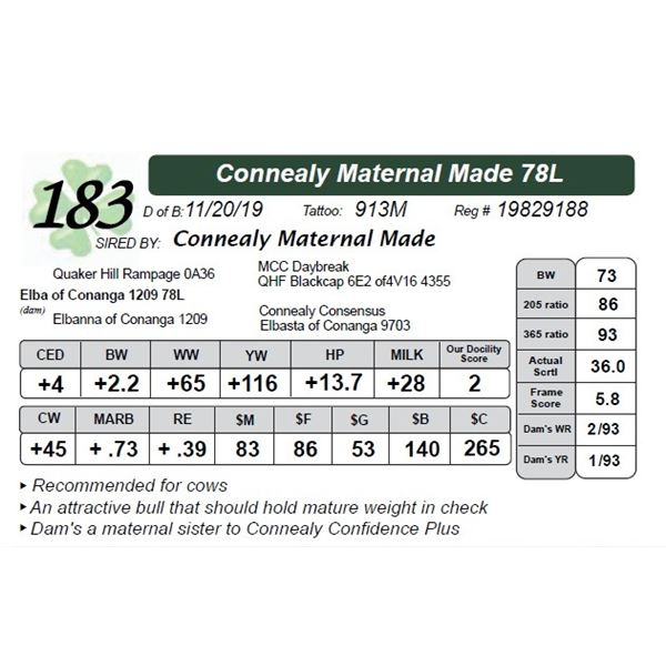 Connealy Maternal Made 78L