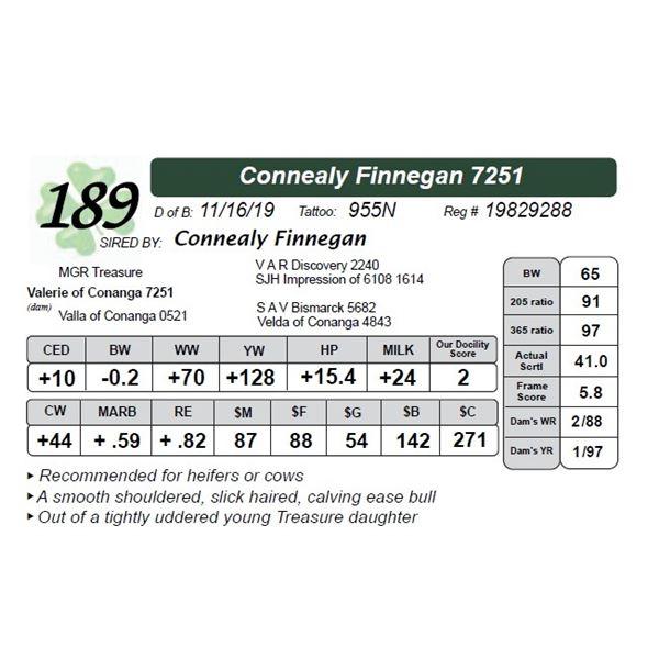 Connealy Finnegan 7251