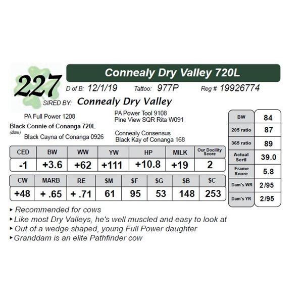 Connealy Dry Valley 720L