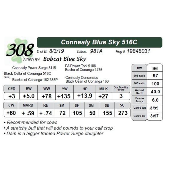 Connealy Blue Sky 516C