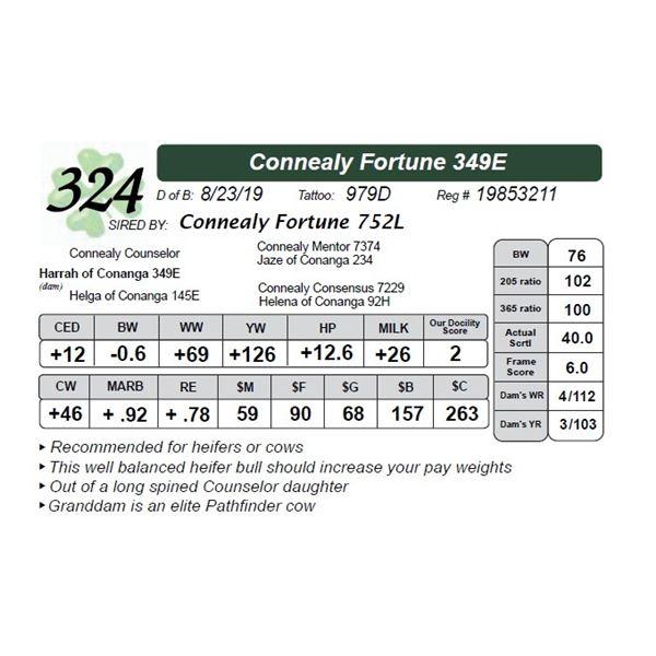 Connealy Fortune 349E