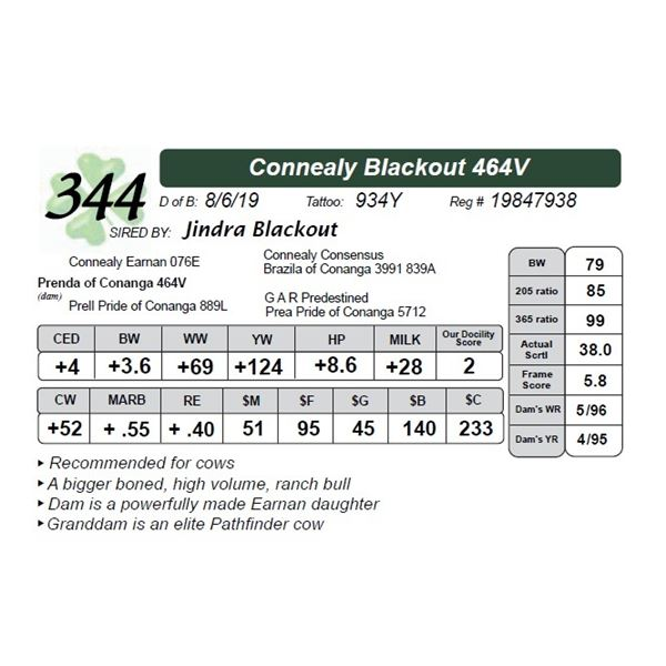 Connealy Blackout 464V