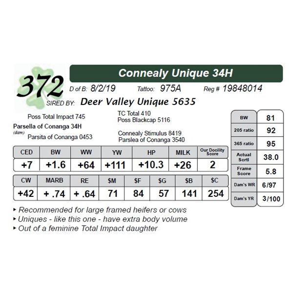 Connealy Unique 34H