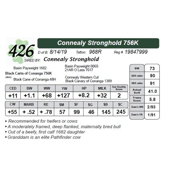 Connealy Stronghold 756K