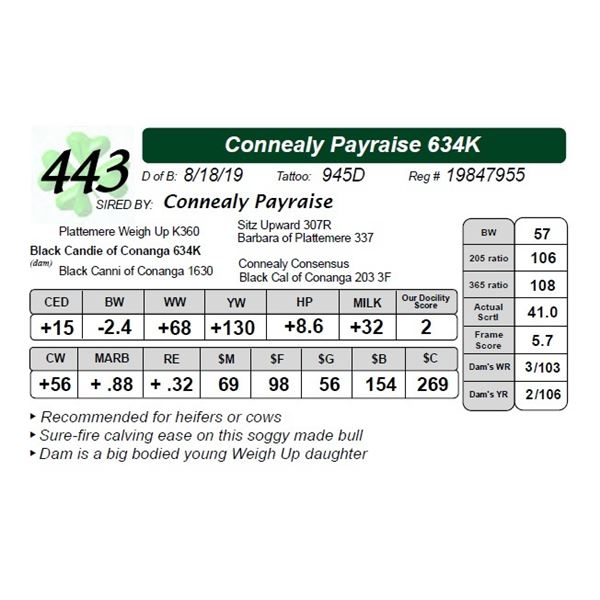 Connealy Payraise 634K
