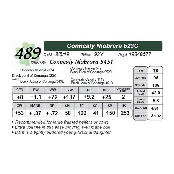 Connealy Niobrara 523C