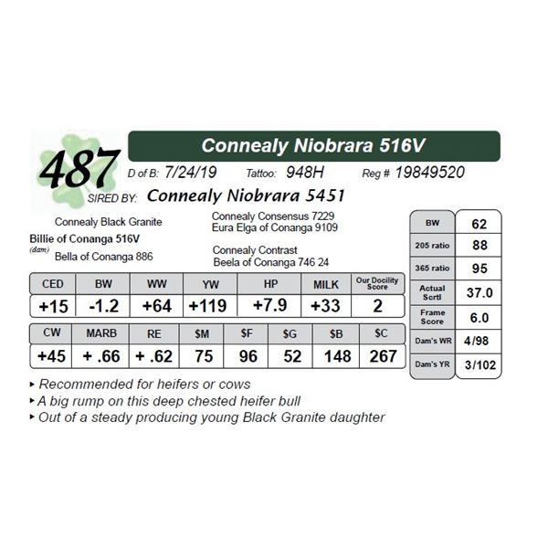 Connealy Niobrara 516V