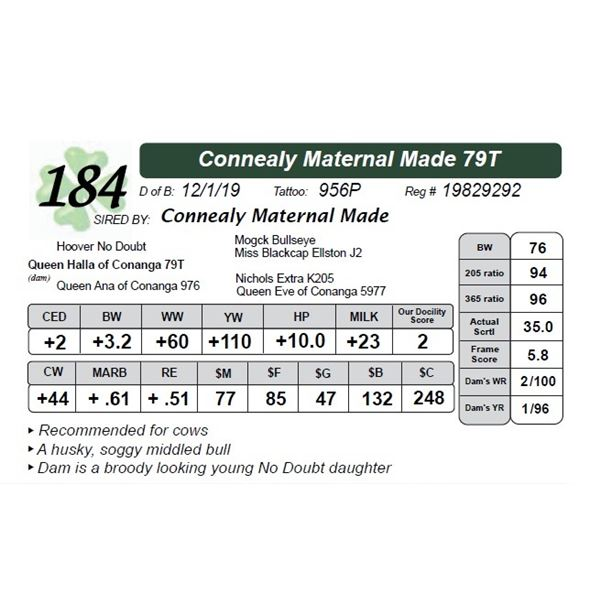 Connealy Maternal Made 79T