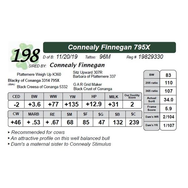 Connealy Finnegan 795X