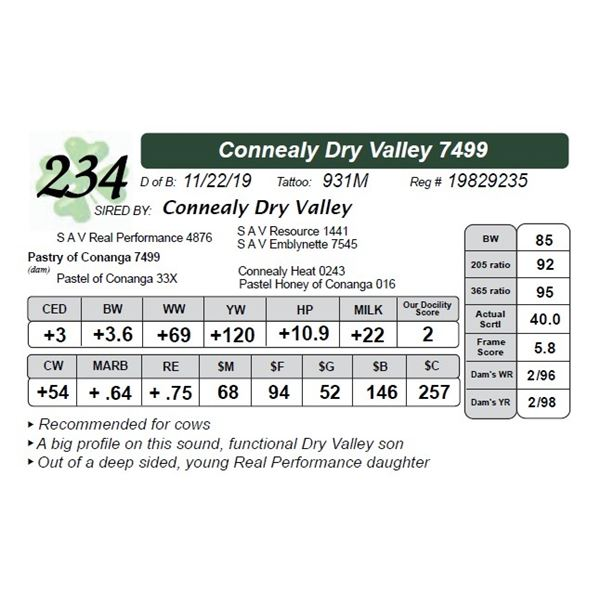 Connealy Dry Valley 7499