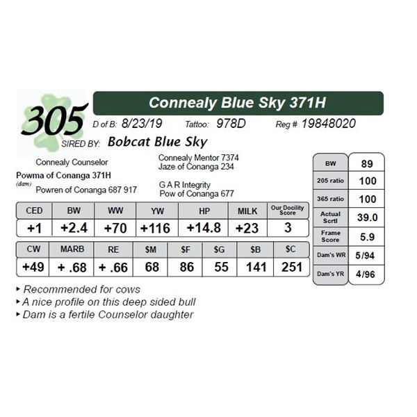 Connealy Blue Sky 371H
