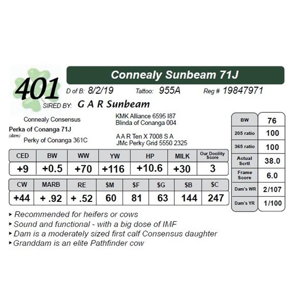 Connealy Sunbeam 71J