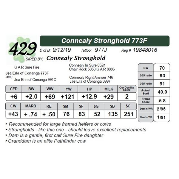 Connealy Stronghold 773F