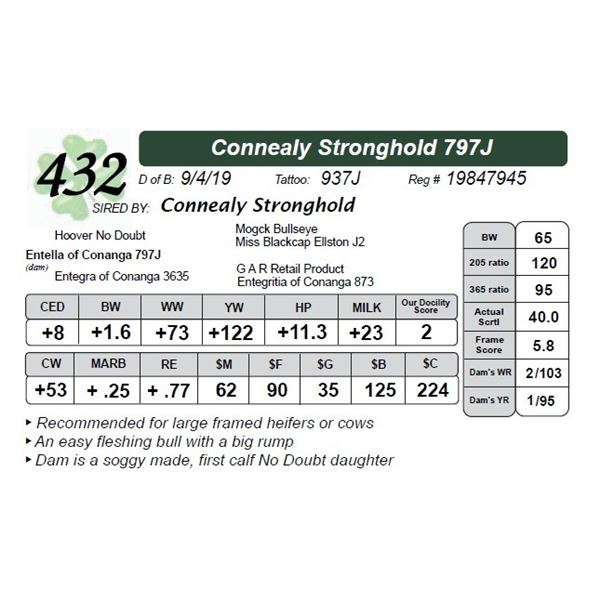 Connealy Stronghold 797J