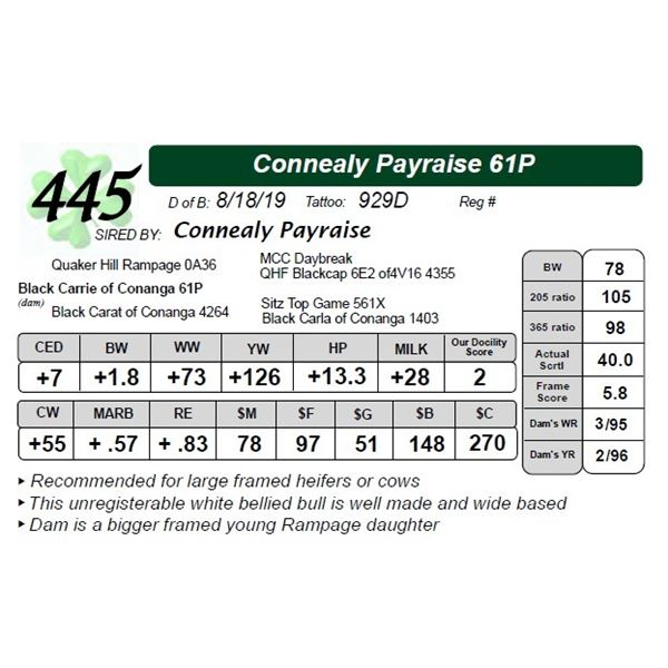 Connealy Payraise 61P